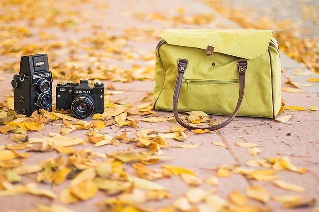 kabelka v listí.jpg