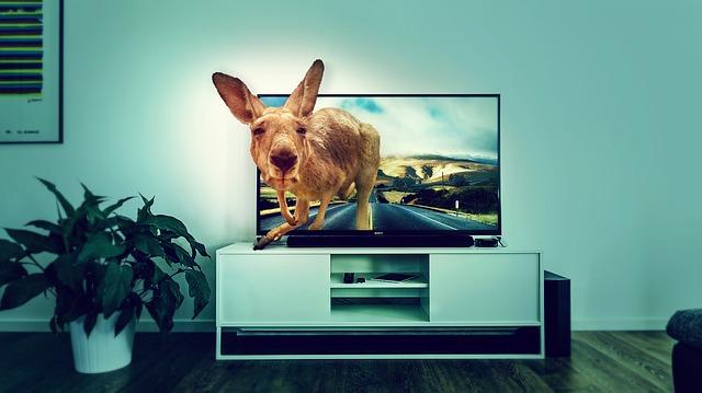 Televize s velkoplošnou obrazovkou